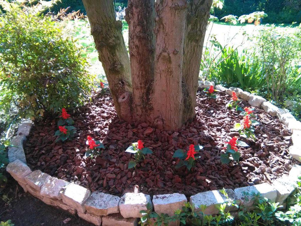 progettazione-manutenzione-giardini-noceto-parma-11-1024x768