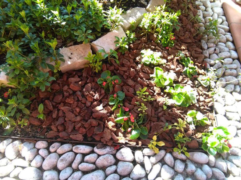 progettazione-manutenzione-giardini-noceto-parma-12-1024x768