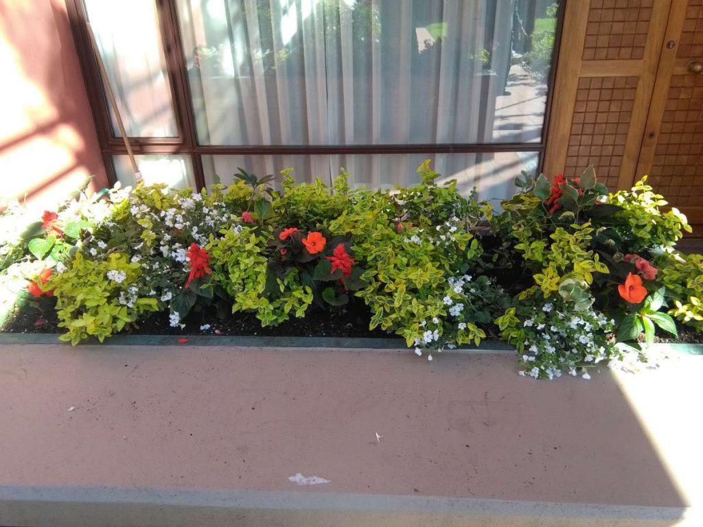 progettazione-manutenzione-giardini-noceto-parma-14-1024x768