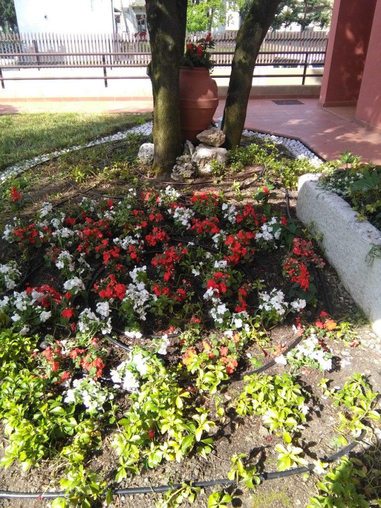 progettazione-manutenzione-giardini-noceto-parma-15-768x1024