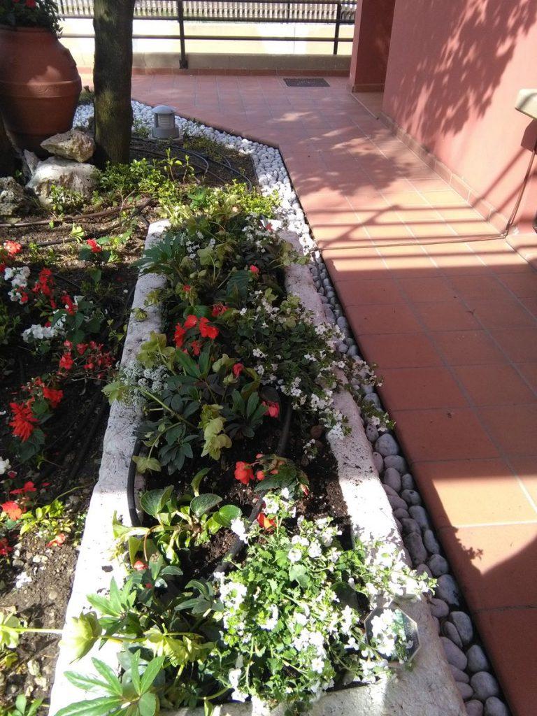 progettazione-manutenzione-giardini-noceto-parma-16-768x1024