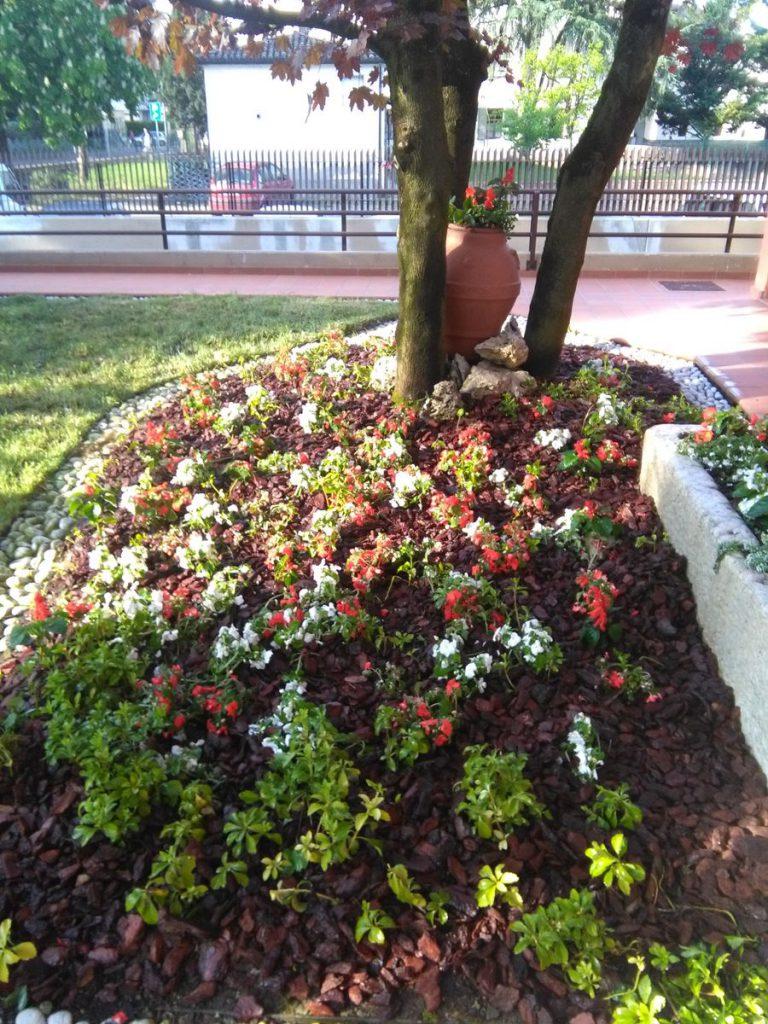 progettazione-manutenzione-giardini-noceto-parma-17-768x1024