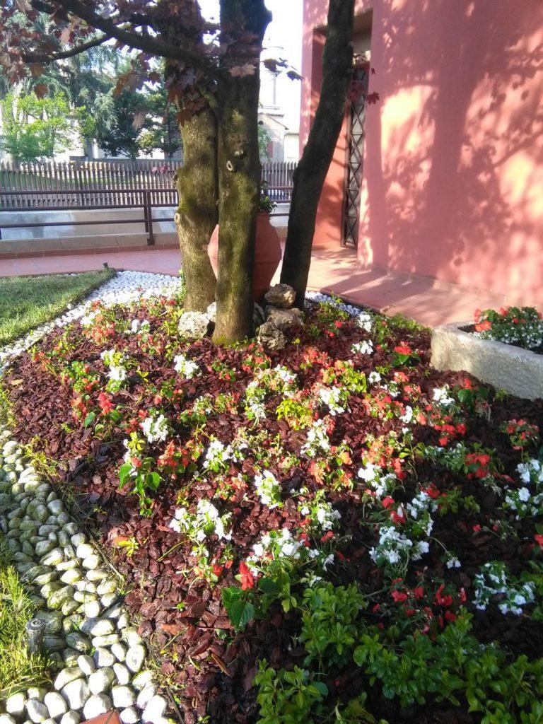 progettazione-manutenzione-giardini-noceto-parma-18-768x1024