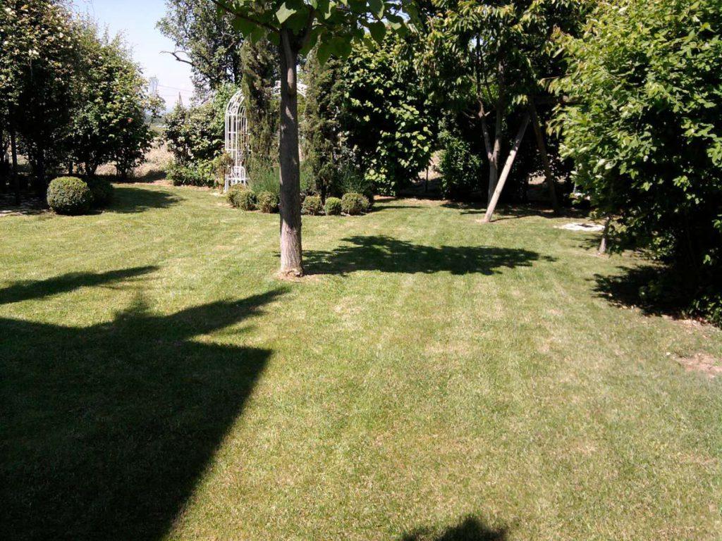 progettazione-manutenzione-giardini-noceto-parma-2-1024x768