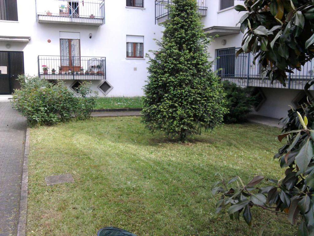 progettazione-manutenzione-giardini-noceto-parma-28-1024x768