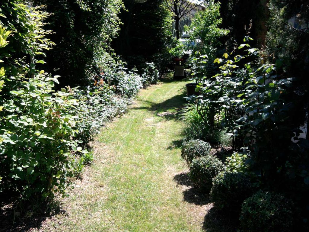 progettazione-manutenzione-giardini-noceto-parma-3-1024x768
