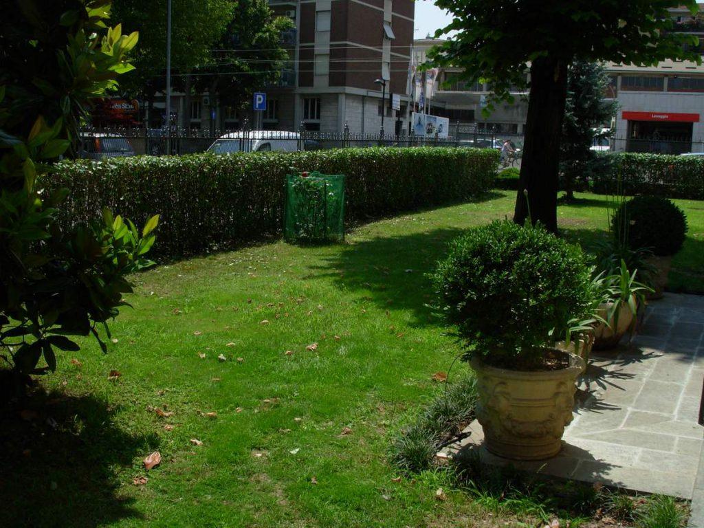 potatura-siepi-alberi-3-1024x768
