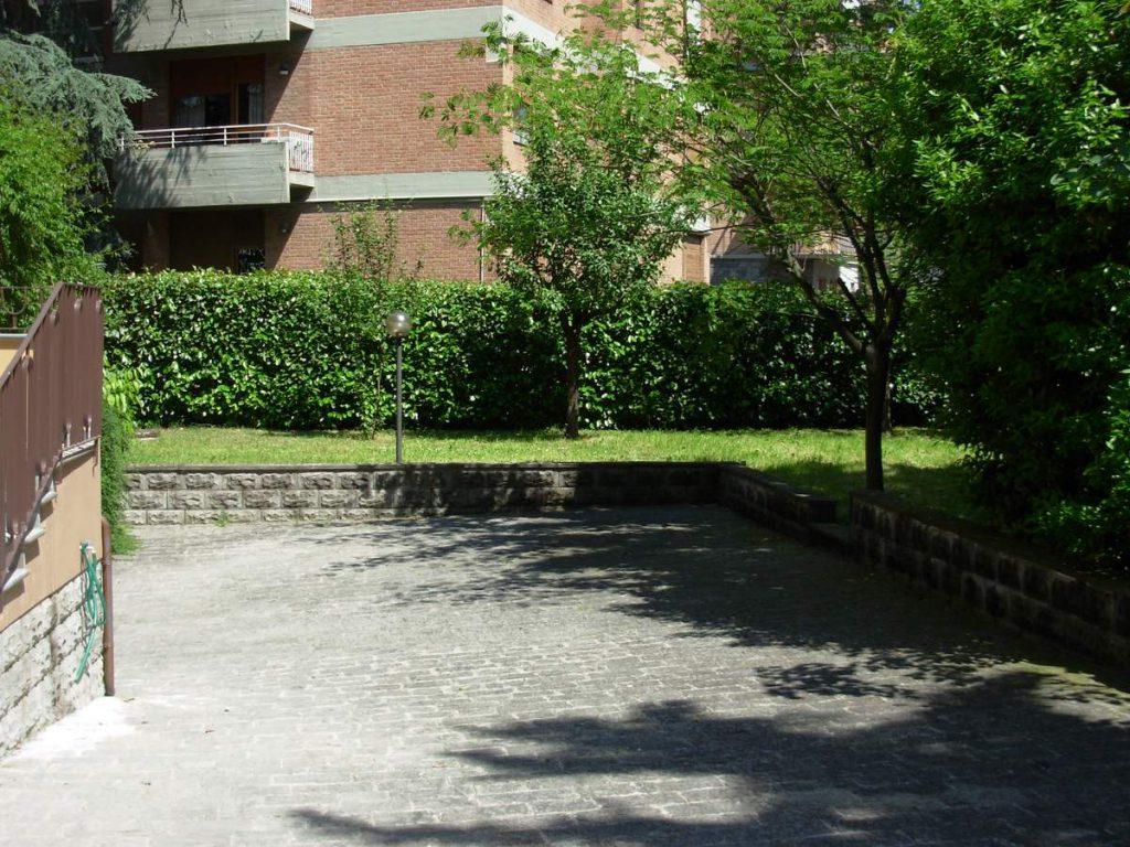 potatura-siepi-alberi-6-1024x768