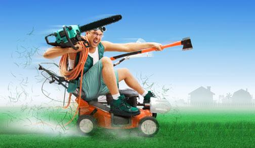 Giardiniere professionista in meno di 50 ore no grazie for Immagini giardiniere