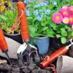Giardinaggio Maggio